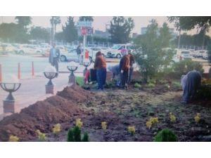 Adana Havalimanı Belediyelerin İşbirliğiyle Yeşillendiriliyor