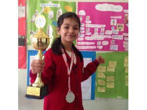 Satranç Turnuvasında TOKİ İlkokulunun Başarısı