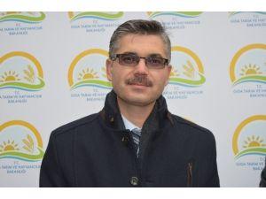İl Gıda,tarım Ve Hayvancılık Müdürlüğü Mevlid Kandili Dolayısıyla Süt Dağıttı