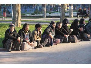 Soma Davasında Aileler Mağdur Sıfatıyla Dinlendi