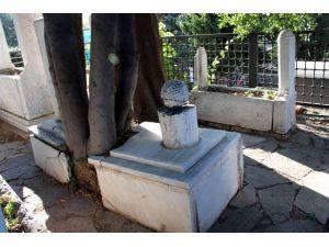 Yavuz Sultan Selim'in nedimi Hasan Can'ın mezarına tanıtım kitabesi