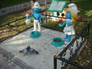 Yemlikler En Çok Güvercinlere Yarıyor