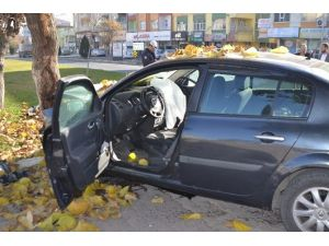 Otomobil Ağaca Çarptı