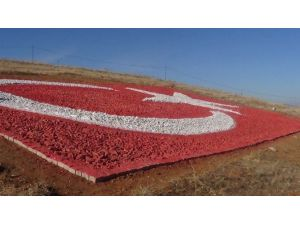Şehitler İçin Dağ Yamacına Taşlardan 210 Metrekare Büyüklükte Türk Bayrağı Yaptı