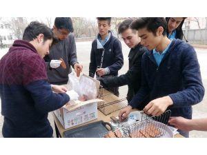 Öğrencilerin Başarısı İçin Okulda Mangal Partisi Düzenlendi