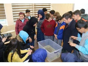 Trabzon'da Öğrencilere Deniz Ekosistemi Ve Çevre Bilinci Anlatıldı