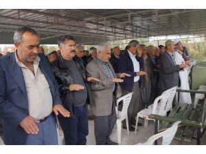 Kurak hava nedeniyle Çukurova çiftçisi yağmur duasına çıktı