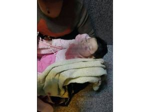 Cizre'de çatışma ortasında kalan 3 aylık bebek ile dedesi öldü
