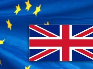 İngiltere'de 2016'da siyasetin gündemi AB olacak