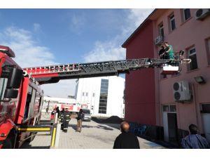 Karakoçan Devlet Hastanesi'nde yangın tatbikatı