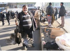 Yozgat'ta Yılbaşı Hindileri Pazara İndi