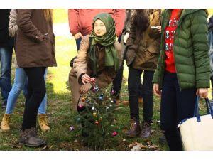 Yeni Yıl Ağacı Toprakla Buluştu
