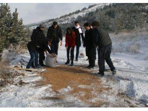 Yozgat'ta Yaban Hayvanları İçin Yem Bırakıldı