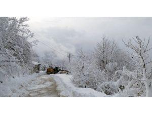 Büyükşehir Belediyesi, Yeni Yıla Karla Mücadele Ederek Girdi