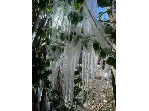Antalya'da 1 Metrelik Buz Sarkıtları Oluştu