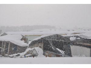 Sinop'ta Yağan Kar Fabrika Çatılarını Çökertti