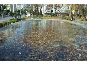 Antalya sıfırın altına düştü havuzlar buz tuttu