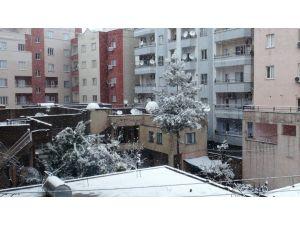 Cizre'ye 2 yıl sonra kar yağdı