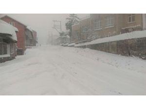 Zonguldak'ta kar hayatı felç etti