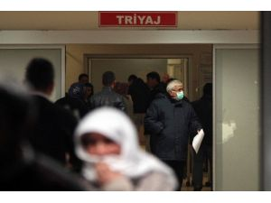 Adana'da Domuz Gribi İddiası
