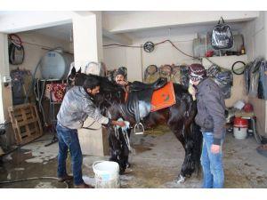 Kış Günü Tazyikli Soğuk Suyla Atın Hamlığını Aldılar
