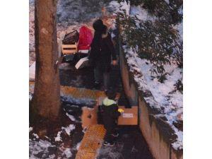 Genç Kız İle Çocuğun Karlı Havada Karton Toplaması Objektiflere Yansıdı