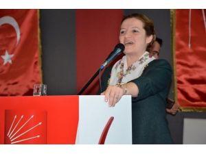 CHP'li Basmacı'dan Referandum Açıklaması