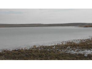 Düden Gölü Buz Tuttu, Kuşlar Gitti