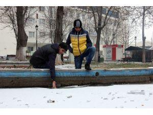 Gaziantep'te Sibirya Soğuğu