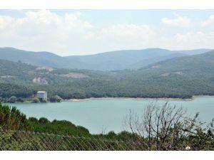 Yalova'da Kar Sularıyla Gökçe Barajı Doldu