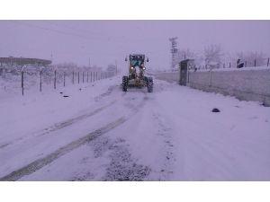 Kar yağışı Diyarbakır'da hayatı olumsuz etkiledi