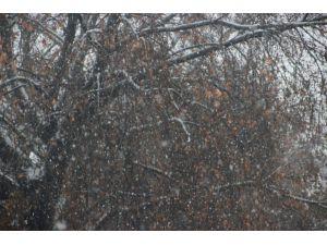 Çankırı merkezde yağmur, ilçelerde kar etkili oldu