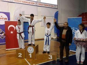 Düzce Taekwondo İl Seçmesi Yapıldı