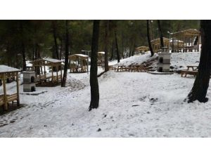Hisar Çamlığı Tabiat Parkı Faaliyete Geçti