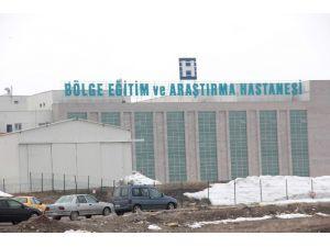 Erzurum'da Domuz Gribi Şüphesi