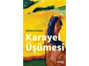 Berna Durmaz'dan yeni öykü kitabı: Karayel Üşümesi