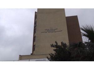 Zonguldak'ta Domuz Gribi Şüphesi