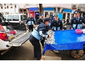 Bozuk Balıklar Belediyesi Ekiplerince İmha Edildi