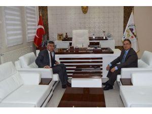 Selvi'den, Başkan Kazgan'a Ziyaret