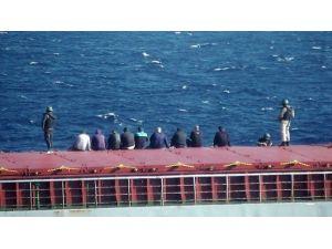 Uyuşturucu Gemisinde İnceleme Başladı