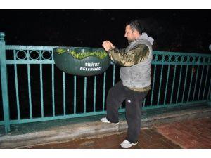 Silifke'de Saksı Çiçeklikler Vatandaşların İlgi Odağı Oldu