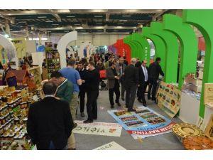 Düzce Belediyesi EMITT Fuarına Hazırlanıyor