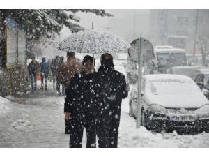 Muş'ta Lapa Lapa Kar Yağışı