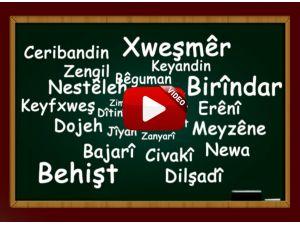 Zaman Kurdî, Kürtçe eğitime başlıyor