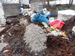 Bartın'da Çöp Dağları Oluştu