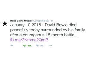 İngiliz rock yıldızı David Bowie kansere yenik düştü