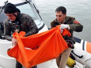 Ege Denizi'nde kaçakları taşıyan tekne battı: 3 ölü