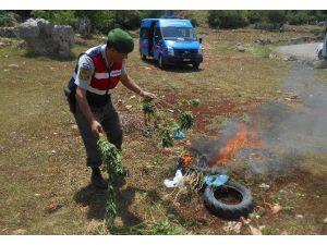 Mersin'de Jandarma Komutanlığı 2015 Yılı Verilerini Açıkladı