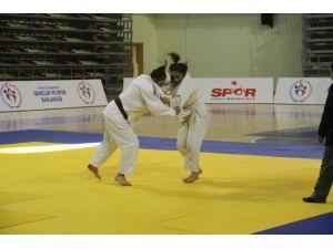 Analig Judo Grup Müsabakaları Şanlıurfa'da Yapıldı