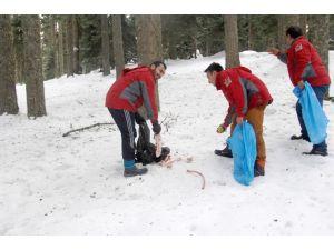 KARDOFF kulübü yaban hayvanları için Sarıçiçek Öküz Yaylası'na yiyecek bıraktı